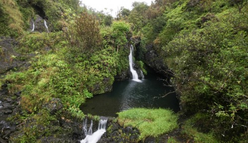 Hanawi Falls, Road to Hana, Maui