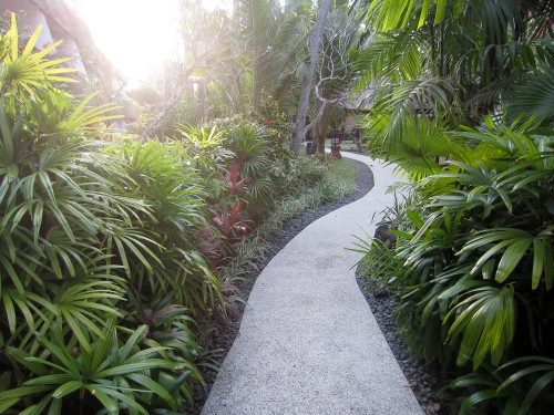 Path to the Regency Club